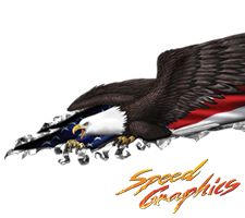Eagle Side Patriotic Tear Vehicle Graphic