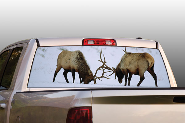 Vehicle Graphics National Geographic Bull Elk In