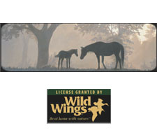 Wild Wings Collection - First Light Truck or SUV Rear Window Graphic by Vantage Point Concepts