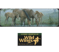 Wild Wings Collection - Sweet Spring Truck or SUV Rear Window Graphic by Vantage Point Concepts